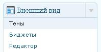 kak_ustanovit_wp_shablon_3