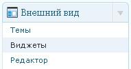 kak_ustanovit_wp_shablon_5