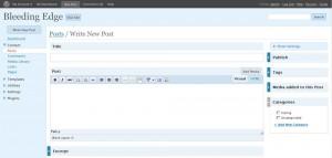 Написание поста WordPress 2.7