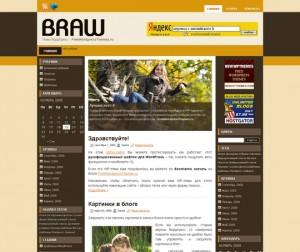 Braw - бесплатная Premium Тема WordPress