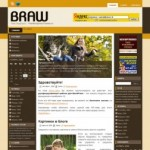Тема WordPress Braw