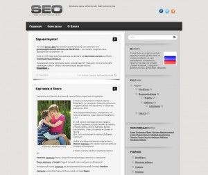 SEO Theme для WordPress блогов