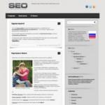 SEO Theme для WordPress блогов